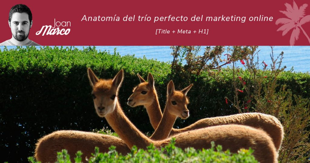 title + meta + h1: el trío perfecto del marketing online