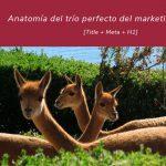 Anatomía del trío perfecto del marketing online: Title-Meta-H1