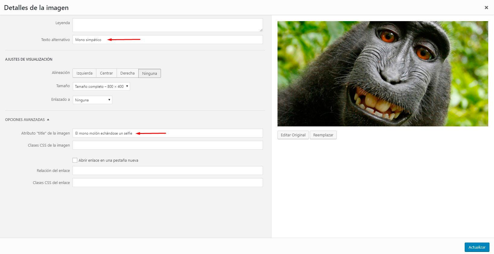 Panel de edición de una imagen en WordPress