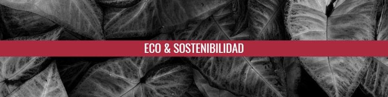 Ejemplos de copy ecológico y sostenible